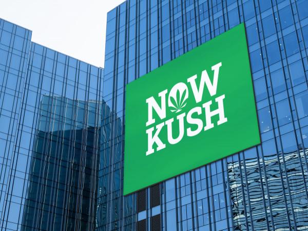 Sample branding #3 for Nowkush
