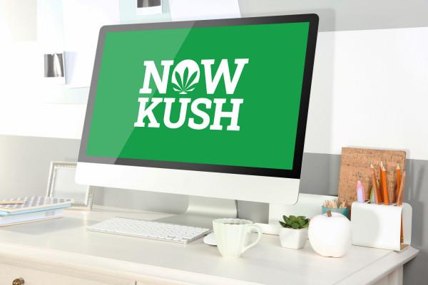 Sample branding #1 for Nowkush