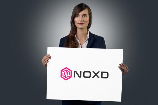 Sample branding #2 for Noxd