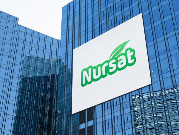 Sample branding #2 for Nursat