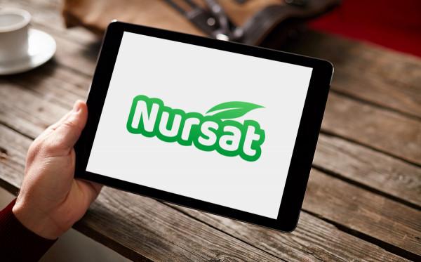 Sample branding #3 for Nursat