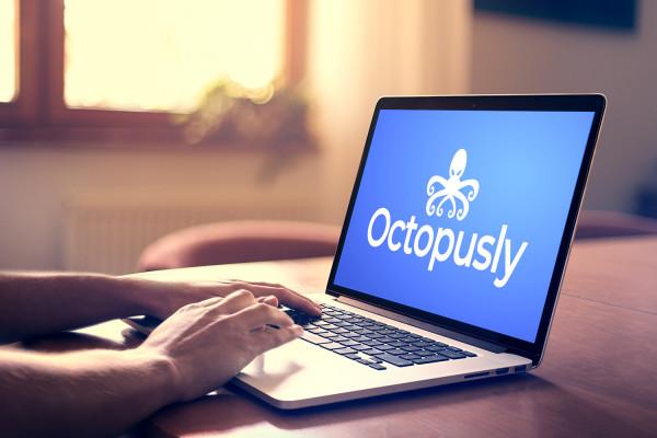 Sample branding #3 for Octopusly