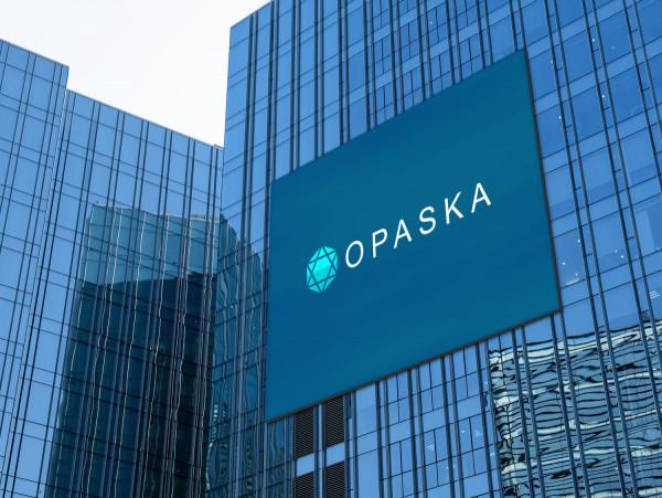 Sample branding #1 for Opaska