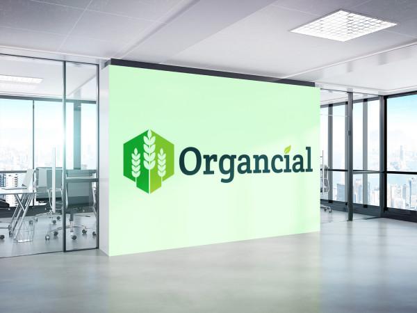 Sample branding #1 for Organcial