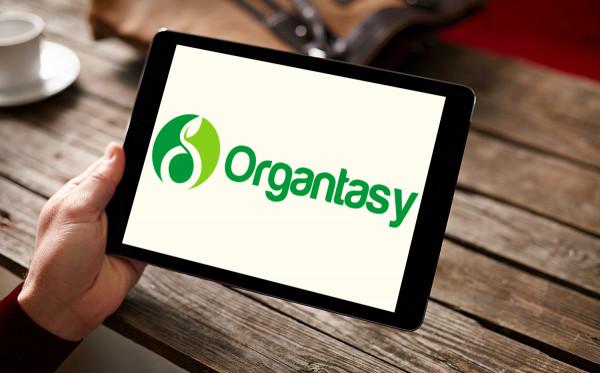 Sample branding #1 for Organtasy