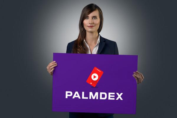 Sample branding #3 for Palmdex