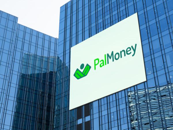 Sample branding #1 for Palmoney
