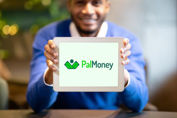 Sample branding #3 for Palmoney