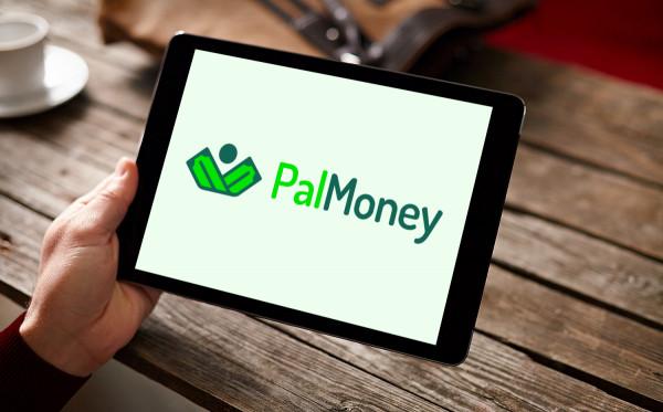 Sample branding #2 for Palmoney