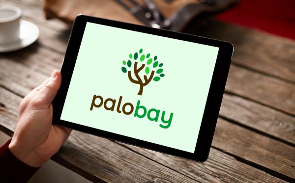 Sample branding #1 for Palobay