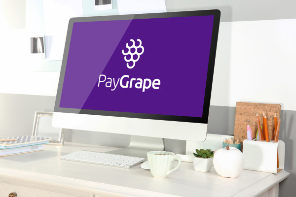 Sample branding #2 for Paygrape