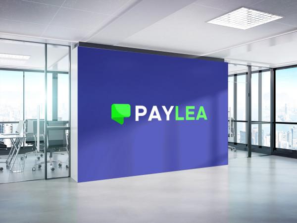 Sample branding #3 for Paylea