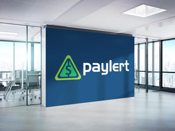 Sample branding #2 for Paylert
