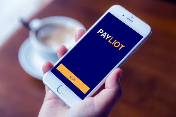 Sample branding #3 for Payliot
