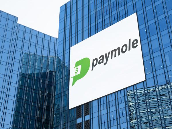 Sample branding #1 for Paymole