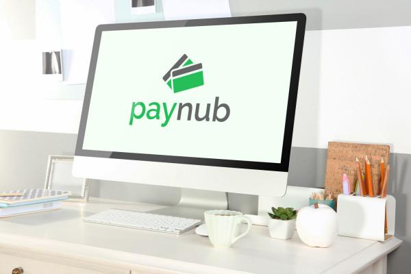 Sample branding #2 for Paynub