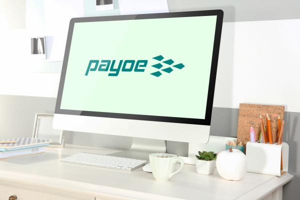 Sample branding #2 for Payoe