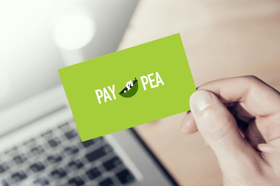 Sample branding #2 for Paypea