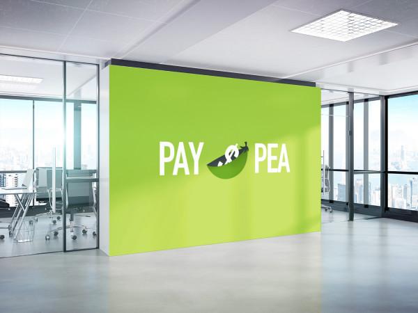 Sample branding #1 for Paypea