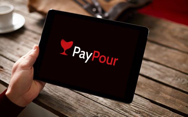 Sample branding #3 for Paypour