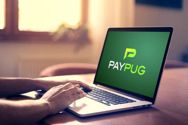 Sample branding #1 for Paypug
