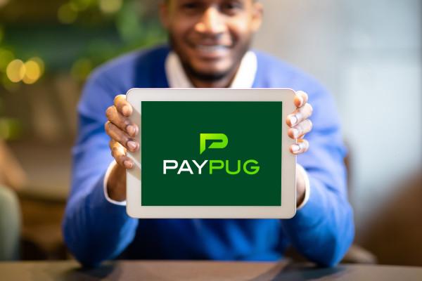 Sample branding #3 for Paypug