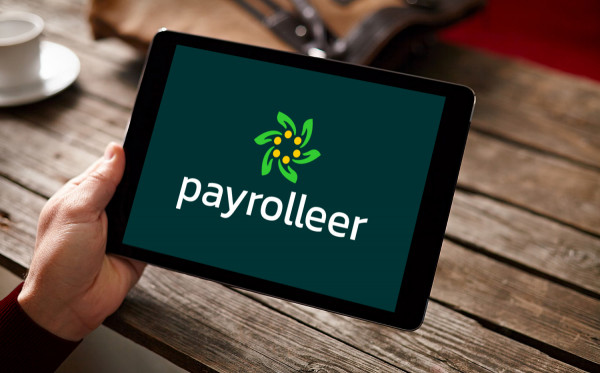 Sample branding #2 for Payrolleer