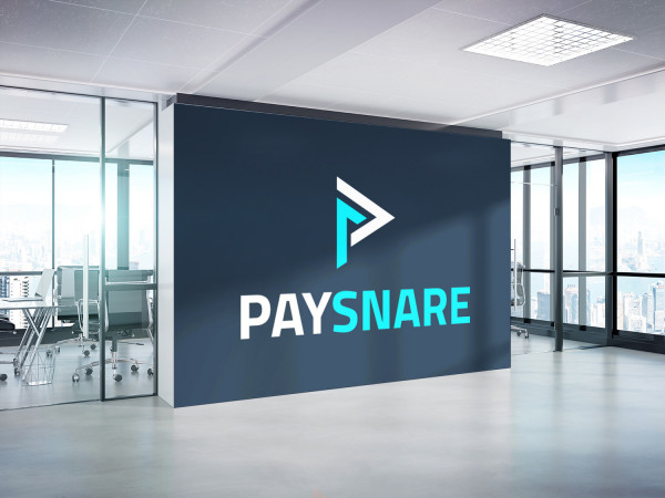 Sample branding #1 for Paysnare