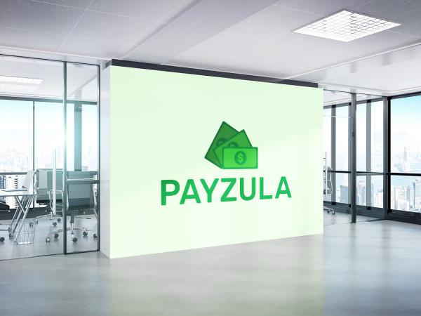 Sample branding #3 for Payzula