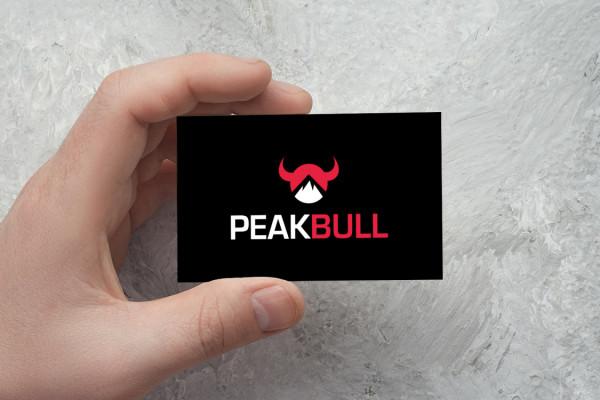 Sample branding #1 for Peakbull