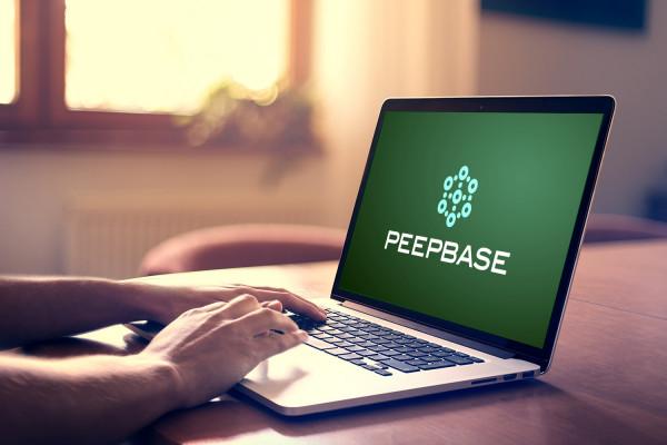 Sample branding #1 for Peepbase