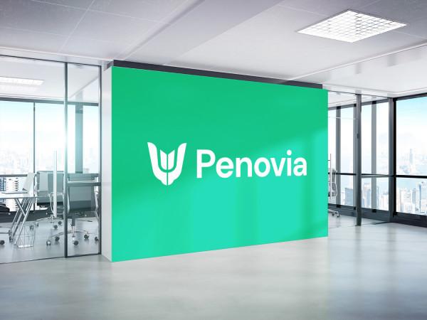 Sample branding #2 for Penovia