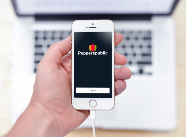 Sample branding #1 for Pepperepublic