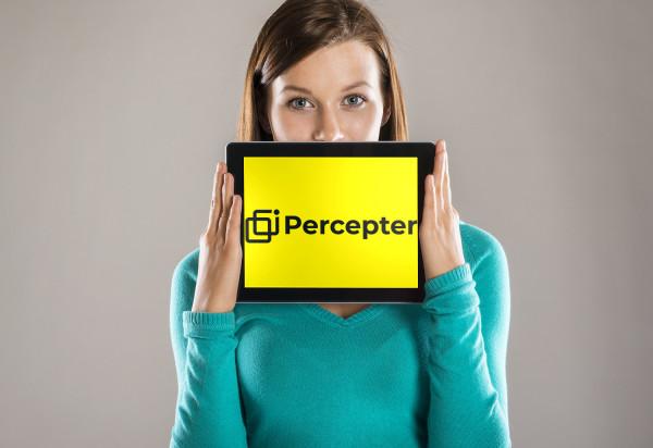 Sample branding #2 for Percepter