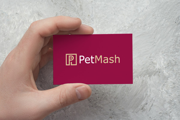 Sample branding #1 for Petmash