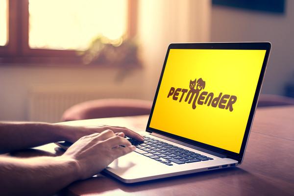 Sample branding #3 for Petmender