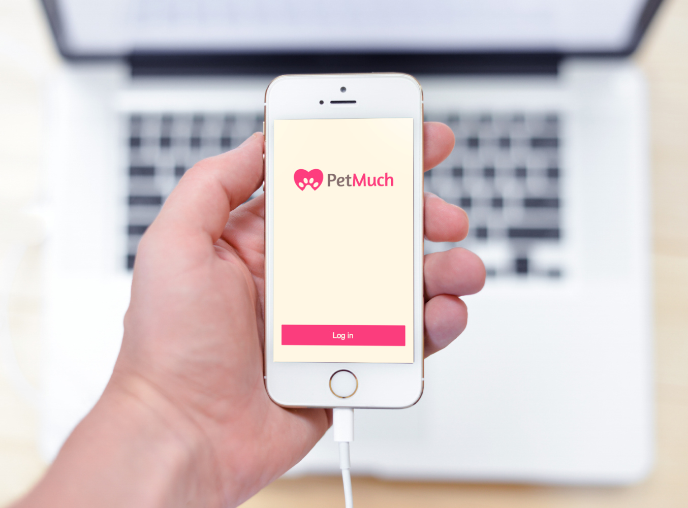 Sample branding #1 for Petmuch