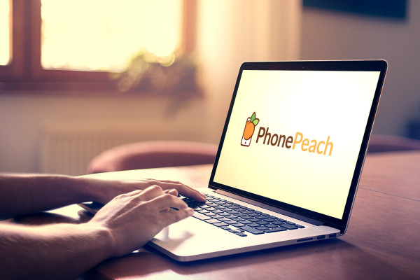 Sample branding #2 for Phonepeach