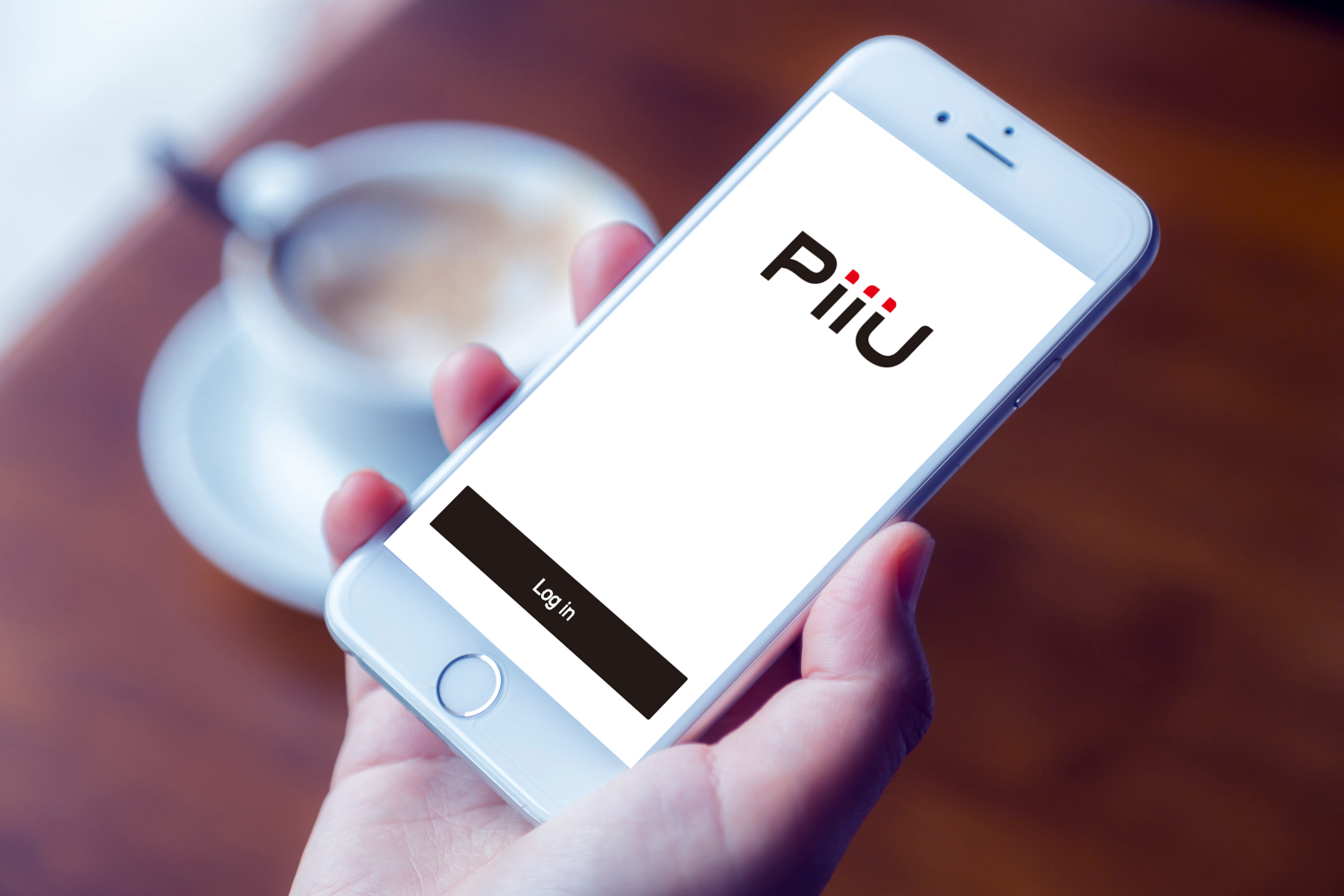 Sample branding #2 for Piiu