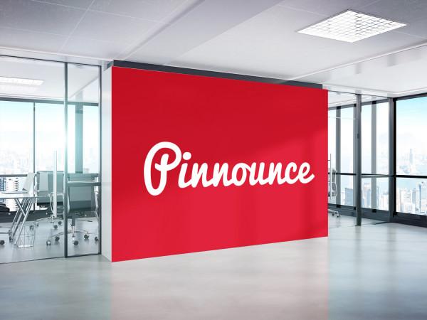 Sample branding #2 for Pinnounce