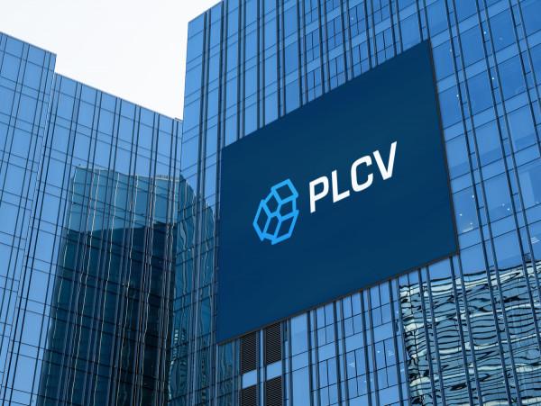 Sample branding #2 for Plcv