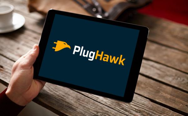 Sample branding #1 for Plughawk