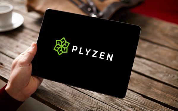 Sample branding #2 for Plyzen