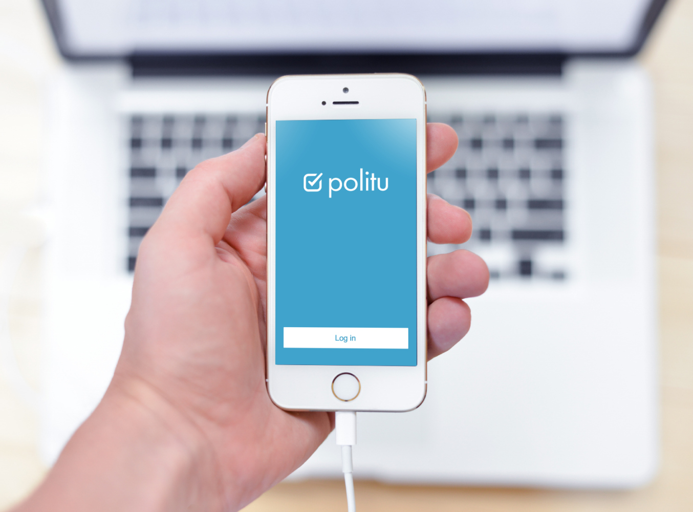 Sample branding #3 for Politu