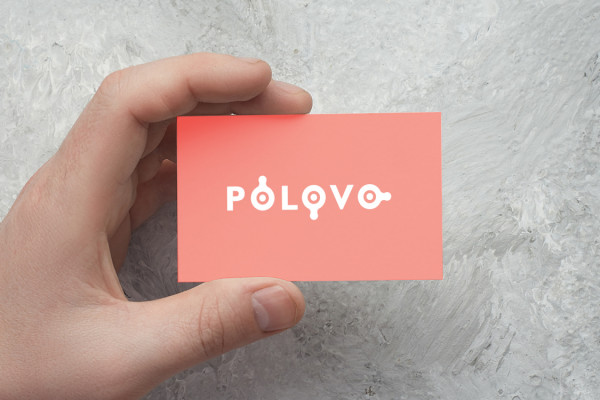Sample branding #1 for Polovo