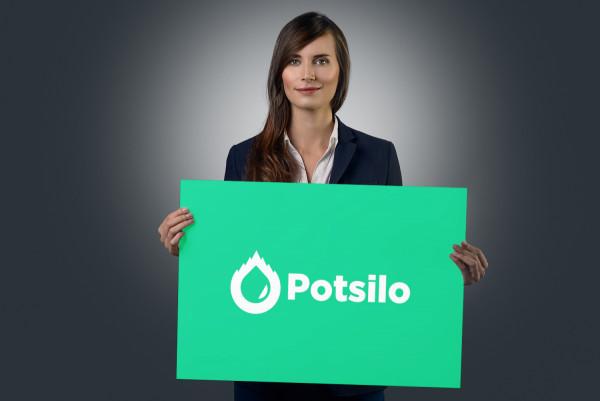 Sample branding #2 for Potsilo