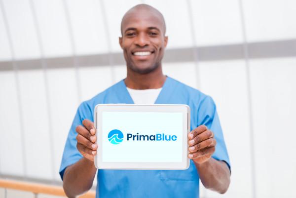 Sample branding #1 for Primablue