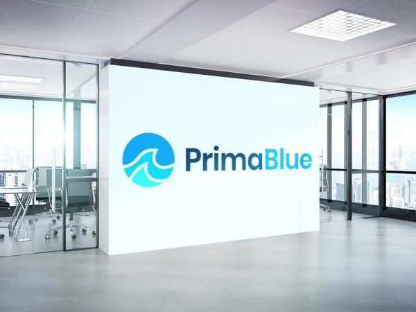 Sample branding #2 for Primablue