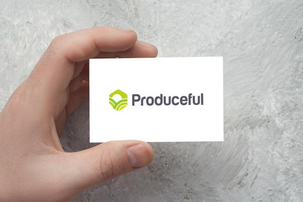 Sample branding #2 for Produceful