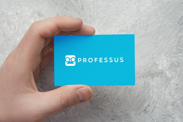 Sample branding #1 for Professus